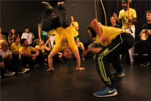 Stage Capoeira Lille 2015