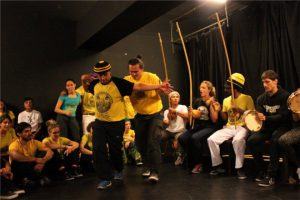 Stage Capoeira Lille